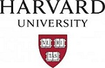 Harvard University Art Museums Logo